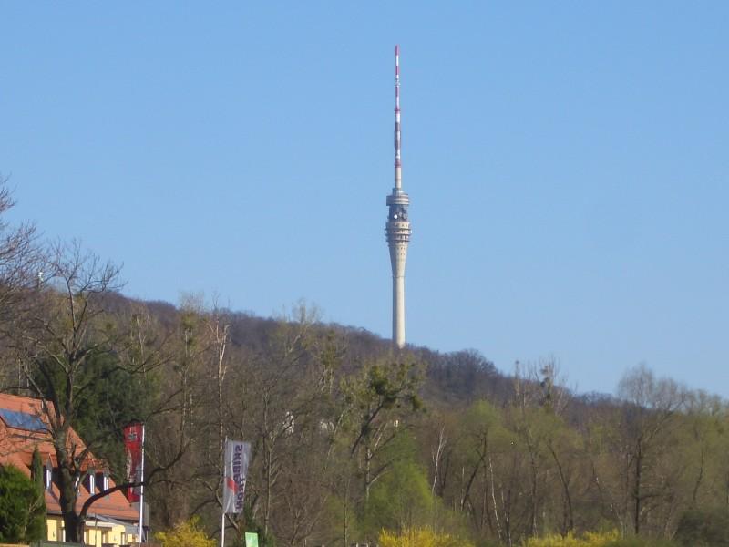 Blick zum Fernsehturm Dresden